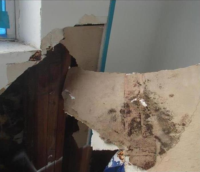Mold Remediation In Maumelle Before