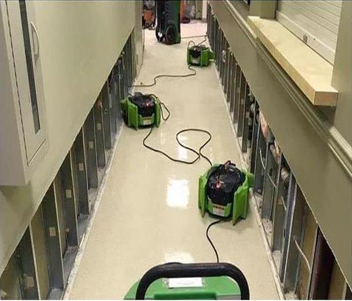 Three of our green machines drying the hallway in this property